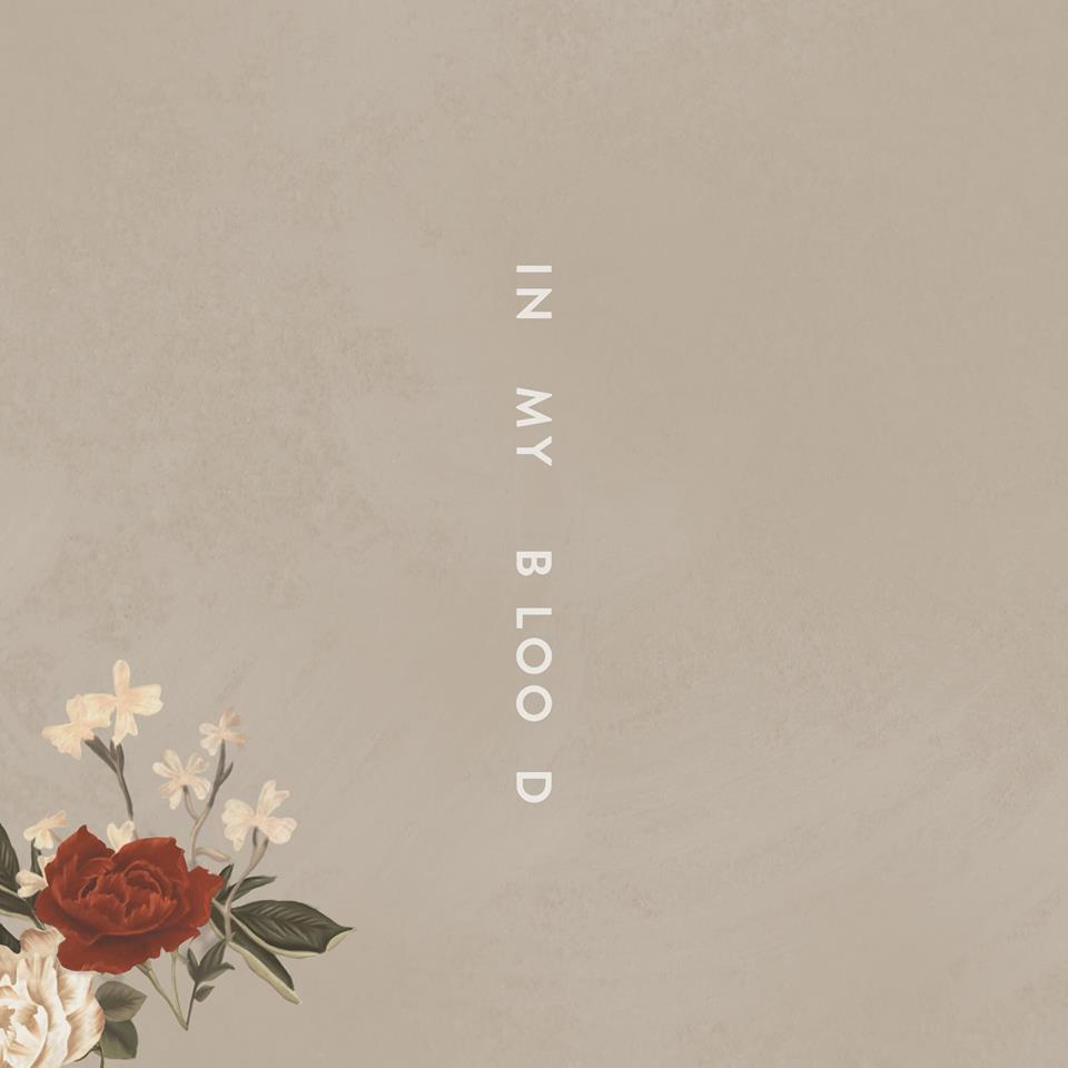 Shawn Mendes goes dark on 'In My Blood', talks about giving up… - Bandook