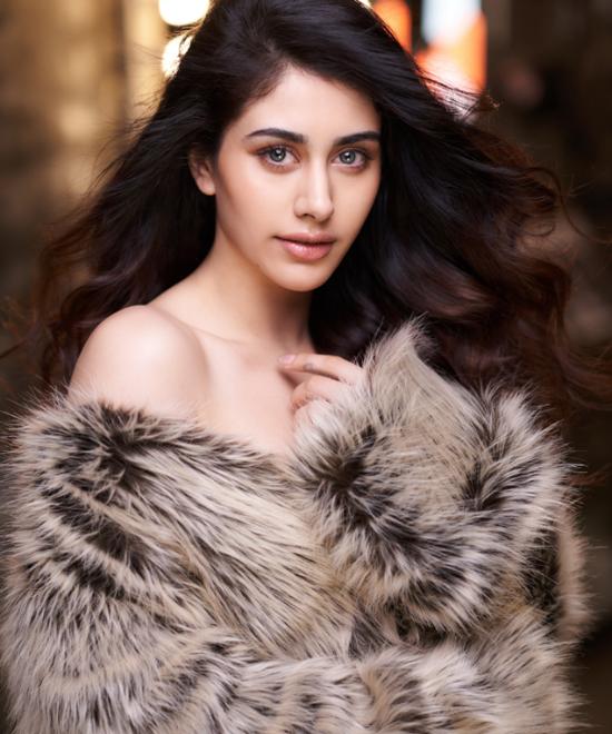 Warina in a Salman Khan's Dabangg 3