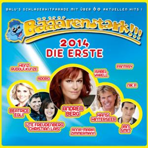 BS2014-DIE_ERSTE_packshot-online_403
