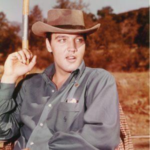 Elvis-Presley_Cowboy