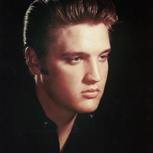 Follow Elvis Presley On Spotify
