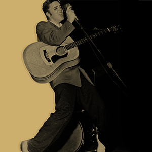 Elvis For Everybody – Find Your Perfect Playlist!
