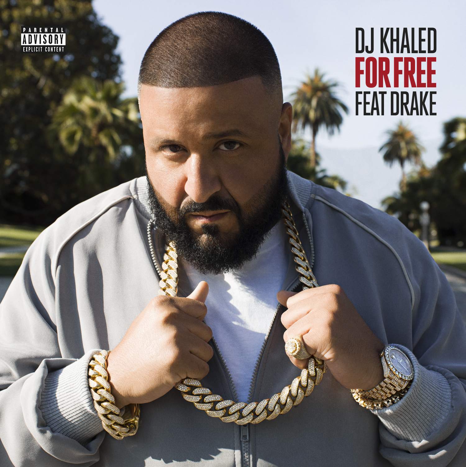 c446a17b88b1d DJ KHALED RELEASES NEW SINGLE