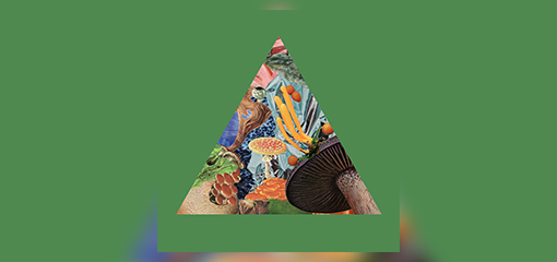 "MODEST MOUSE SHARE ""POISON THE WELL"" A-SIDE FROM RECORD STORE DAY TRIANGLE 7"""