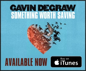gavindegraw_somethingworthsaving_300x250