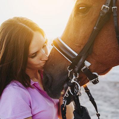 Die besten Pferdethemen auf dem Mädchenblog.