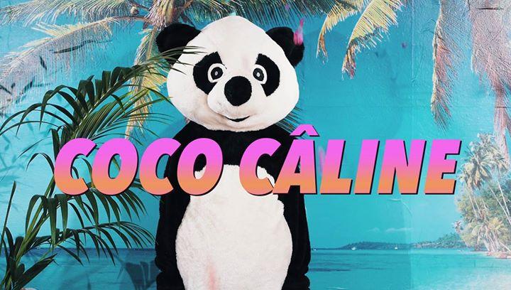 Coco Câline, le clip !