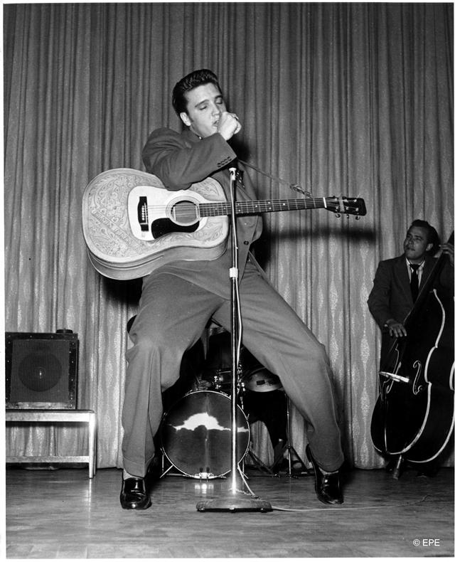 Elvis_Web