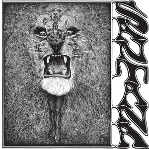 Santana Vinylcover