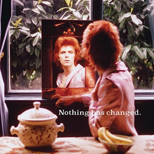 Nothing Has Changed  (2 LP)