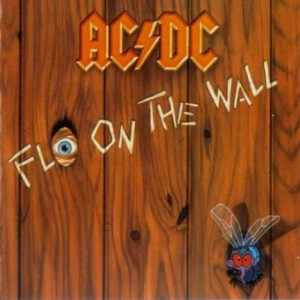 AcDc – Fly on the wall