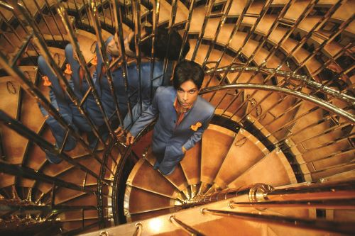Prince-Stairs-credit-The Prince Estate-Afshin ShahidiPlanet Earth