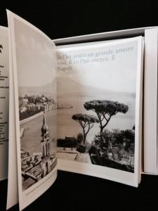 Canzone Napoletana Piccola Enciclopedia libro