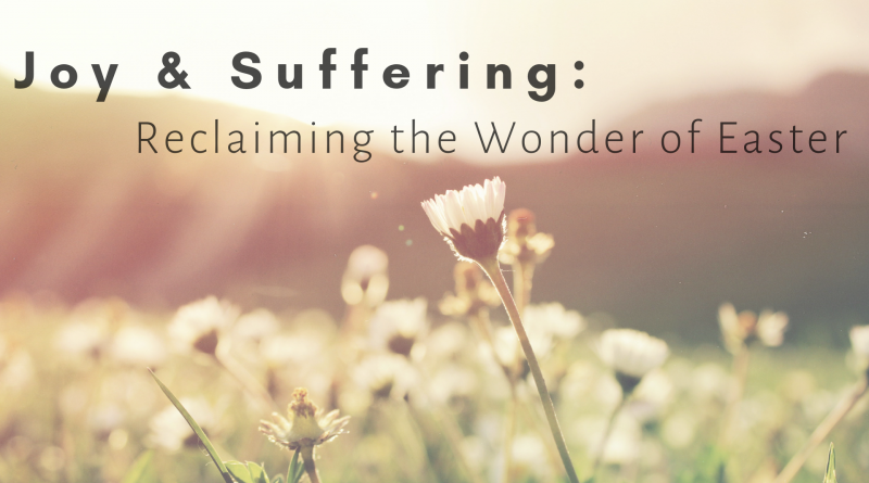 Joy & Suffering Blog Graphic