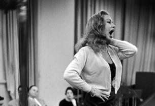 Joan Diener (Photo: Guy Gillette)