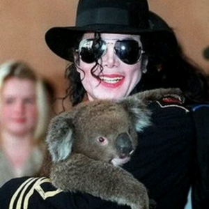 MJ and his koala