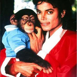 Michael Jackson and his Chimp, Bubbles