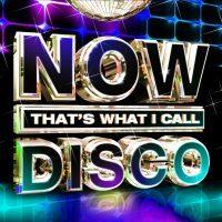 now_disco