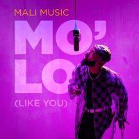 Mo'Lo (Like You) by Mali Music