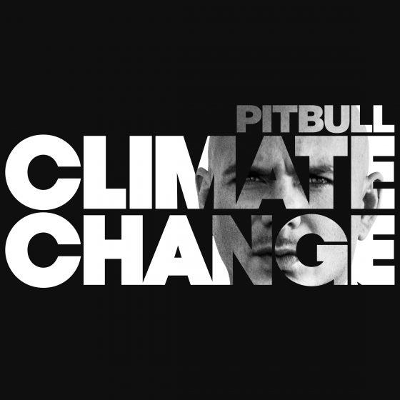 Pitbull Press Photo