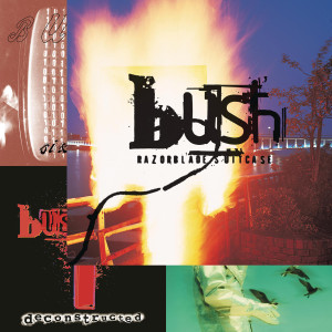 Bush Guide: Razorblade Suitcase