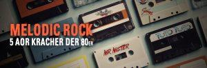 Melodic Rock 5 AOR Kracher