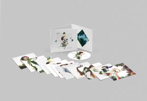 Imagen de edición especial CD de El árbol y el bosque de Rozalén