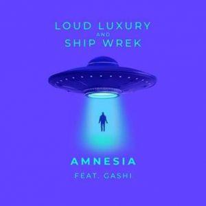 Loud Luxury and Ship Wrek Official Single Art