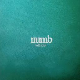 Numb Remix Art