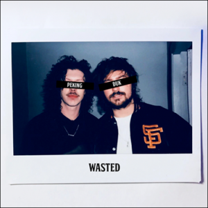 Peking Duk Release New Single 'Wasted'