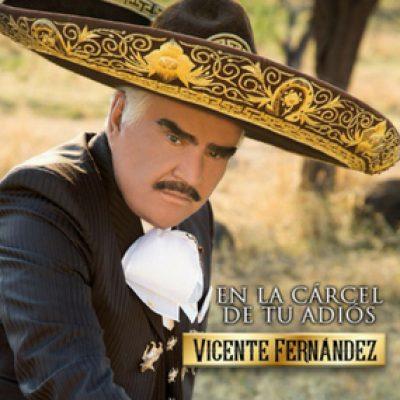 VICENTE FERNANDEZ – EN LA CARCEL DE TU ADIOS