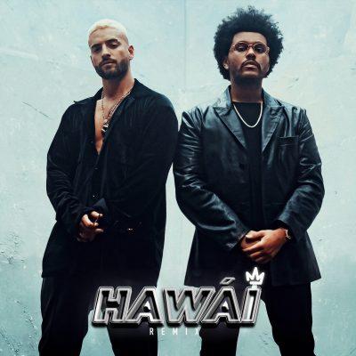 Hawai Remix