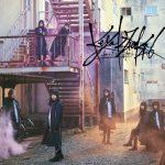 欅坂46 / 打破玻璃! (Type D CD+DVD)
