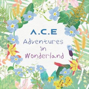 A.C.E / ADVENTURES IN WONDERLAND (台壓盤)
