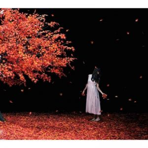 Aimer / Akanesasu/everlasting snow (CD+DVD)