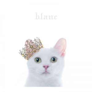 Aimer / BEST SELECTION blanc