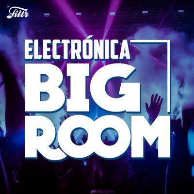 MÚSICA ELECTRÓNICA ⚡ BIG ROOM EDM MUSIC ft Believers Alan Walker