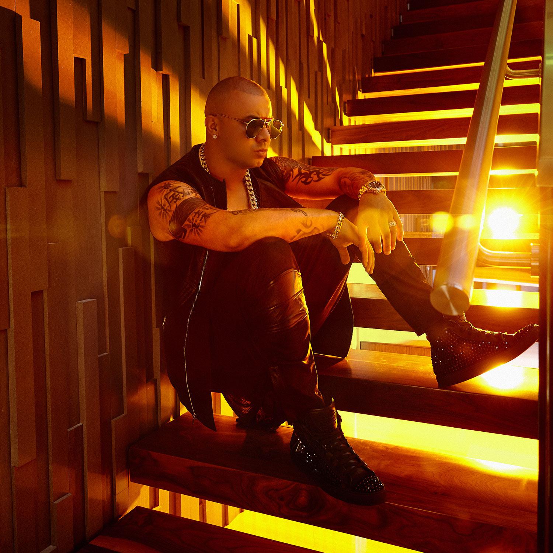 Imagen de Wisin músico del género Reggaeton activo en Los 2000s