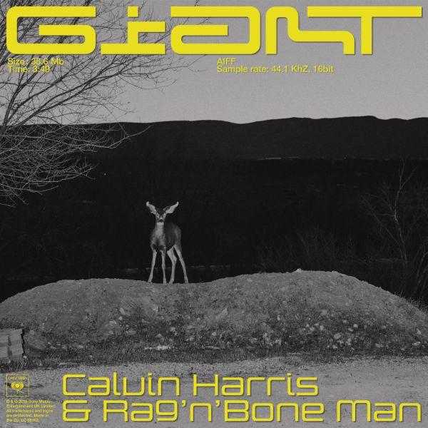 "Calvin Harris lanza su nuevo single ""Giant"" junto a Rag 'n' Bone Man"