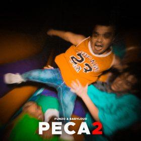 PECA2