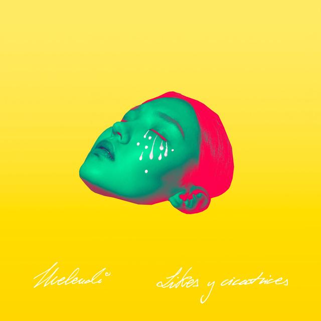 Likes y Cicatrices (álbum)
