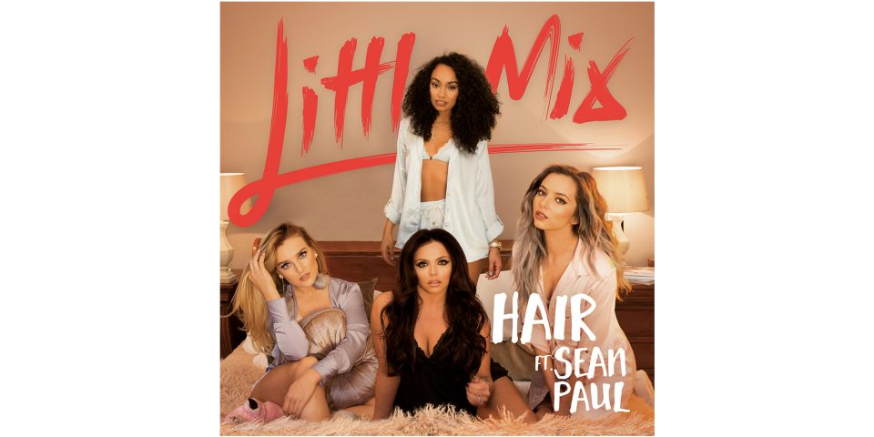 Little_Mix_Hair_clip