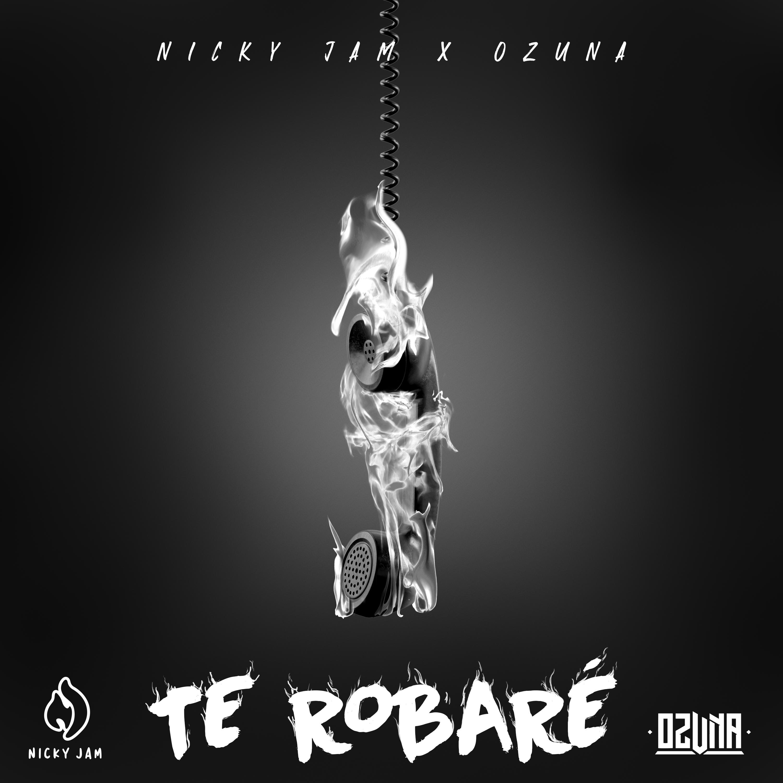 NickyJam_TeRobare