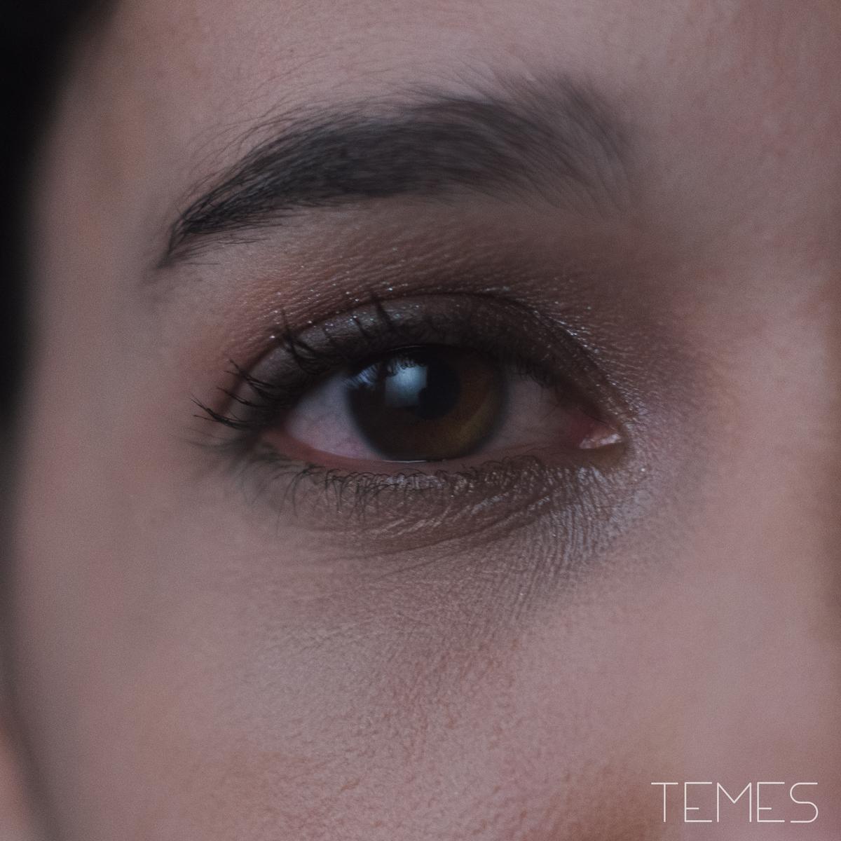 iLe_Temes
