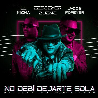 No Debí Dejarte Sola Remix