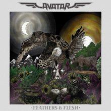 Avatar – Feathers & Flesh