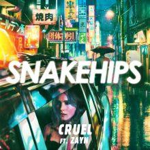 ZAYN w najnowszym klipie duetu SNAKEHIPS – oto 'Cruel'!