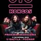 """KONGOS – twórcy hitu """"Come With Me Now"""" –  na 2 koncertach w Polsce!"""