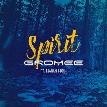 """Złota Płyta dla """"Spirit"""" Gromee feat. Mahan Moin. A czy Ty poznałeś już największy radiowy hit karnawału?"""