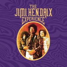 """The Jimi Hendrix Experience  – """"The Jimi Hendrix Experience (8-LP Vinyl Box Set)"""" (LP)"""